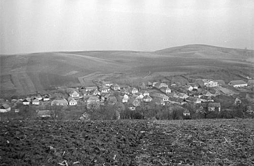 latkep1953